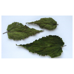 Nettle leaf  - Urtica dioica 50g